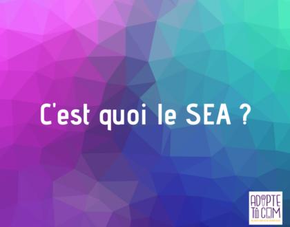 SEA Search Engine Advertising définition publicité sur les moteurs de recherche